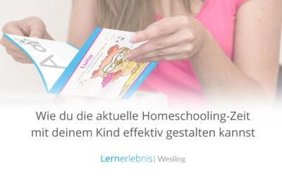 Wie du die aktuelle Homeschooling-Zeit mit deinem Kind effektiv gestalten kannst – 10 Tipps
